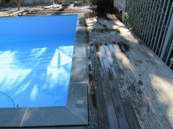 Grey Granite Bullnose Pool Coping